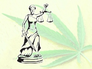 Multiple regulations need to be written and instated before NY's medical marijuana program can proceed. Images of lady justice courtesy of Vectorstock.com and the leaf is courtesy of Jon Richfield of Wikimedia Commons.